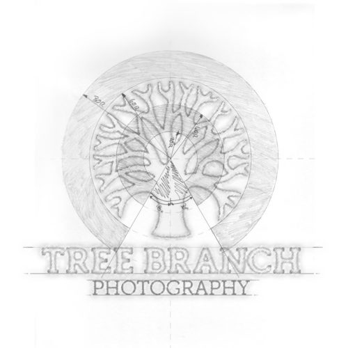Tree Branch Photography Logo Design Sketch
